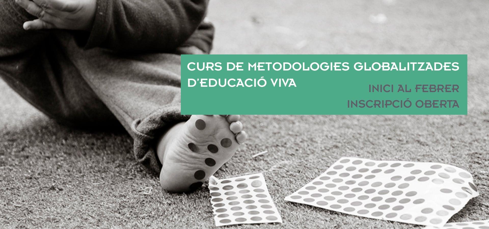 slide curs metodologies