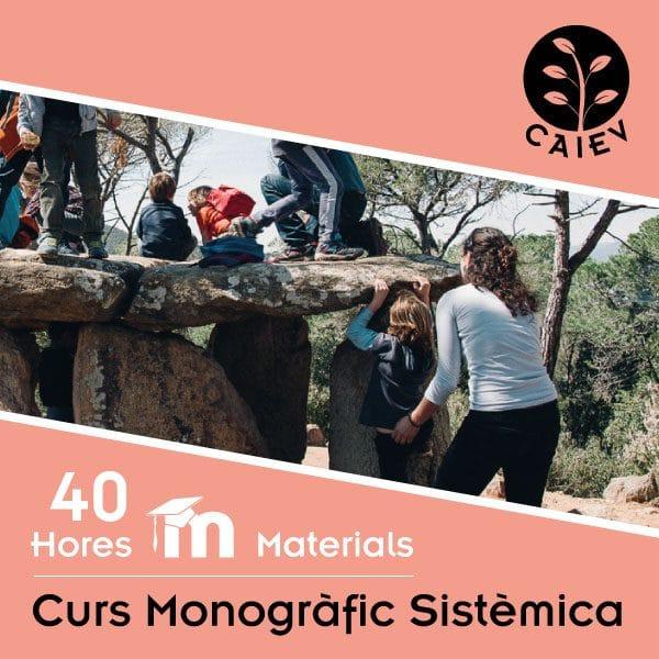curs monografic sistemica