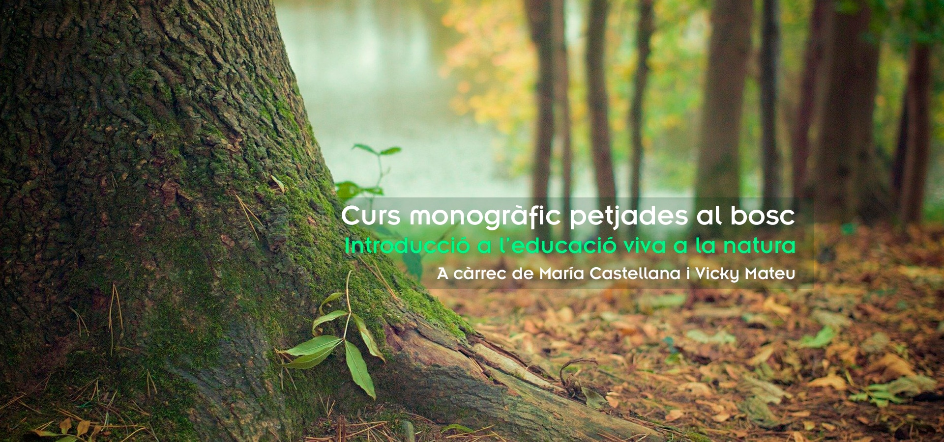 monografico petjades al bosc